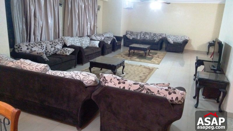 Furnished Apartment with Balcony for Rent in Dokki