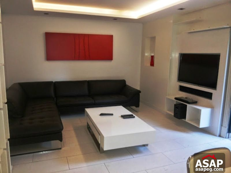 Apartment with Garden in Zamalek