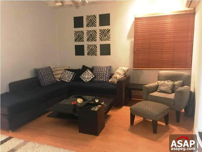 Nice Property in Zamalek for Rent