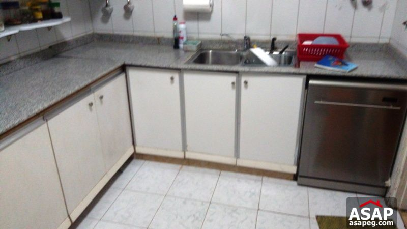 Apartment for rent in dokki