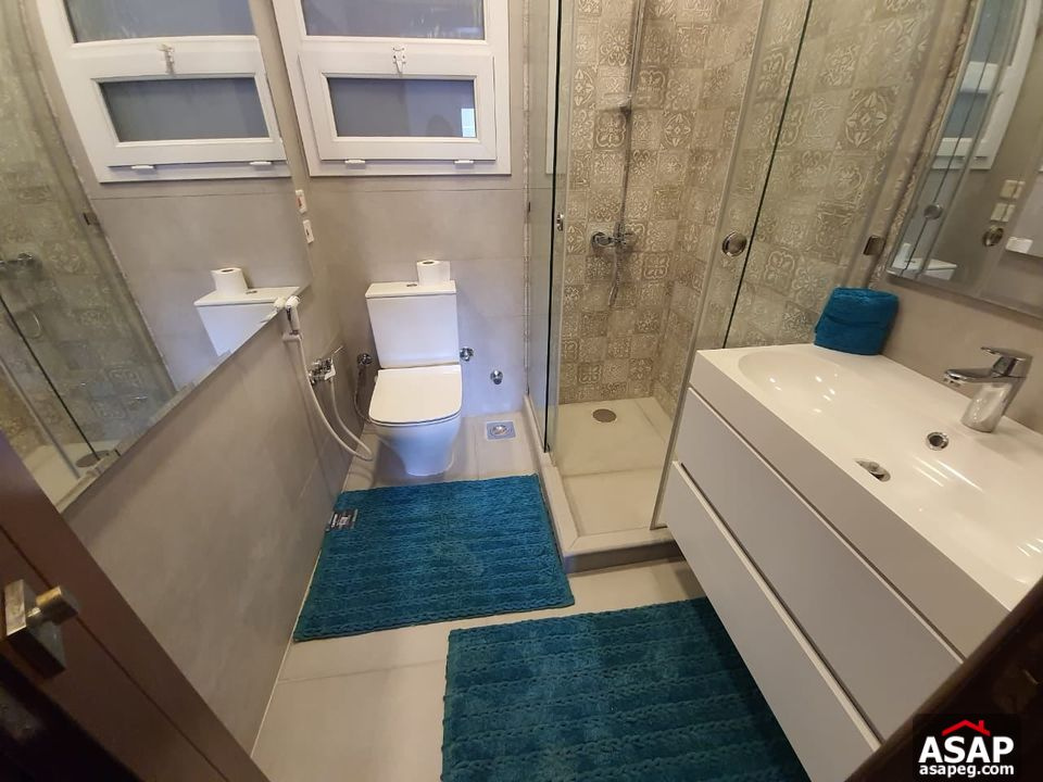 Furnished Apartment in Mountain View Hyde Park for Rent