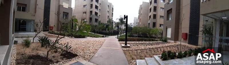 Property for Rent in the Village - New Cairo