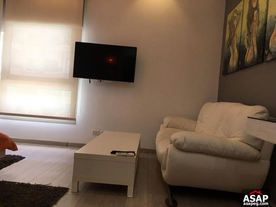 Furnished Studio for Rent in Maadi Sarayat