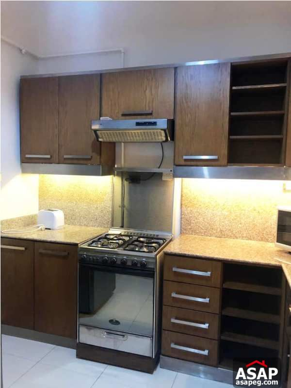 Modern Flat for Rent in Zamalek