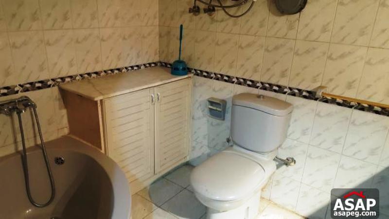 Furnished Apartment in Maadi Degla
