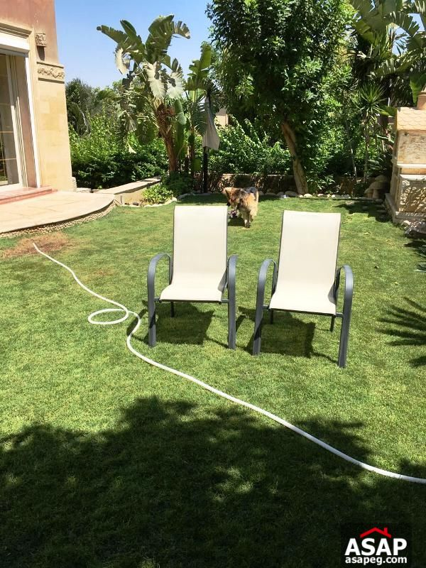 Duplex with Big Garden in Lake View for Rent
